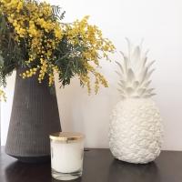 Lampe veilleuse Ananas - Blanc