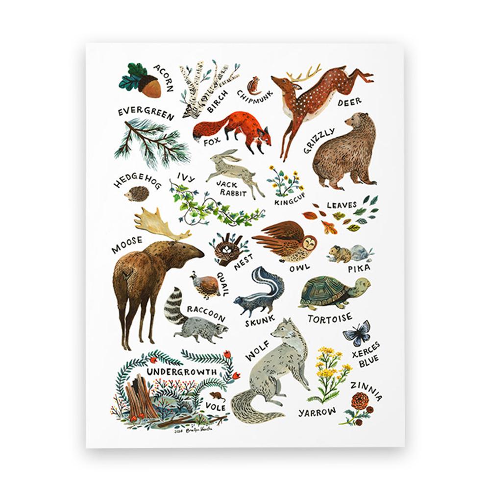Affiche Alphabet Woodland Multicolore Wildship Pour