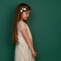 4 pinces à cheveux Lune et étoiles - Or/Argent