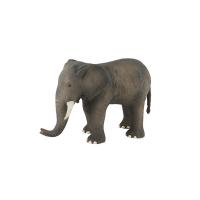Grand éléphant - Aujourd'hui c'est mercredi