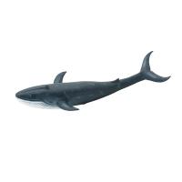 Grande baleine - Aujourd'hui c'est mercredi