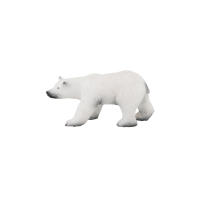 Grand ours polaire - Aujourd'hui c'est mercredi