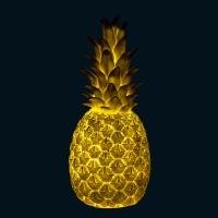 Lampe veilleuse Ananas - Blanc/Or