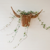 Panier Bullhead pour plantes/fleurs en rotin - Naturel