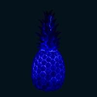 Lampe veilleuse Ananas - Indigo